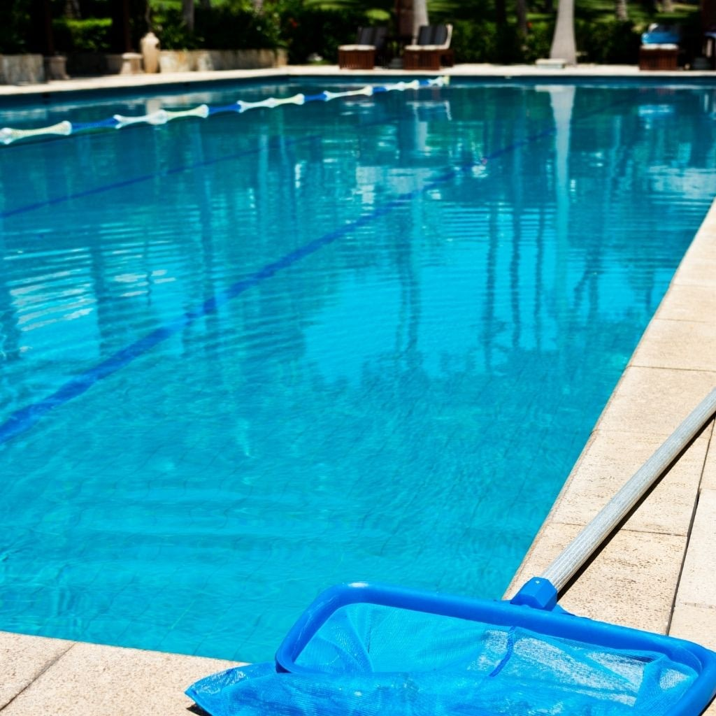 example of a commercial pool service account with leaf skimmer net