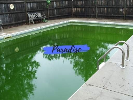 Dirty pool in Cincinnati area that was cleaned green to clean